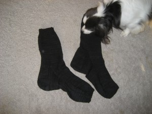Massive Man Socks - Toby shows scale