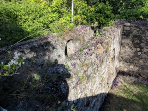Estate ruins at Dallas Castle St Andrew Jamaica